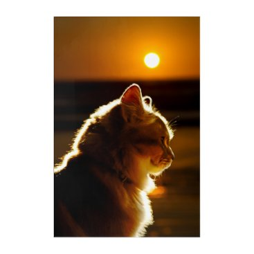 Beach Themed Cats Sunset Acrylic Wall Art