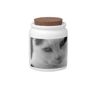 Cats Thoughts Candy Jar