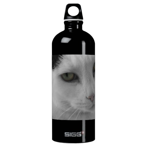 Cats Thoughts SIGG Traveler 1.0L Water Bottle