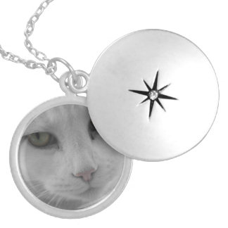 Cats Thoughts Silver Plated Necklace