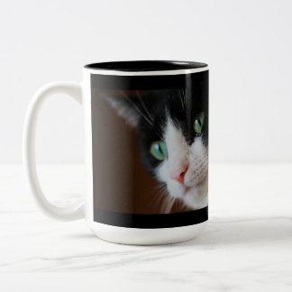 Cats Two-Tone Coffee Mug