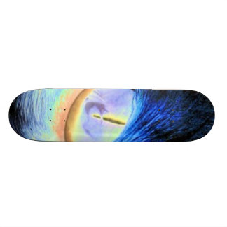 cats typhoon skateboard deck