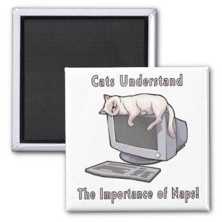 Cats Understand Fridge Magnet