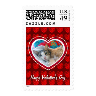 Cats Valentine postage