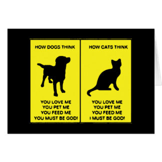 Cats vs dogs funny greeting card