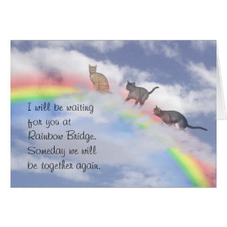 Cats Waiting At Rainbow Bridge Greeting Card