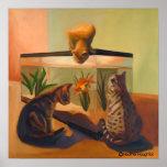 Cats watching Fish Print