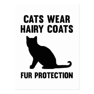 Cats Wear Hairy Coats Fur Protection Postcard
