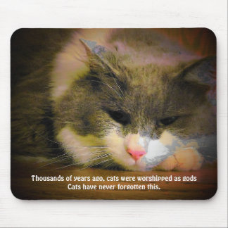 Cats were worshiped mouse pad