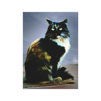 Cats whiskers gallery wrap canvas
