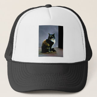 Cats whiskers trucker hat