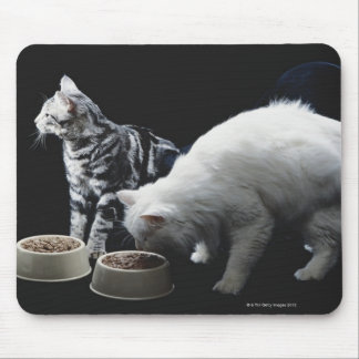Cats with bowl of food mouse pad