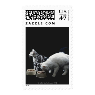 Cats with bowl of food postage stamp