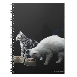 Cats with bowl of food spiral notebook