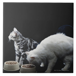 Cats with bowl of food tile