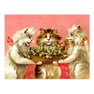 Cats with Mistletoe Postcard
