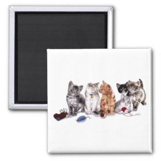 Cats with toys magnet