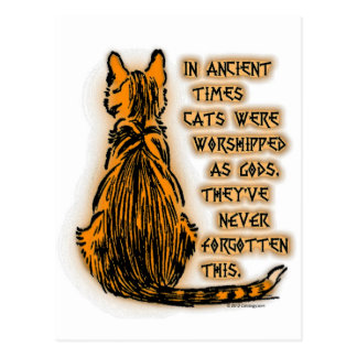 Cats Worshipped as Gods Postcard