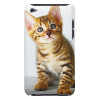 CATSCATS BARELY THERE iPod COVER