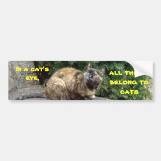 Catseye Bumper Sticker