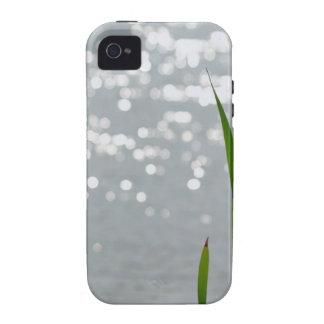 Cattail delante del lago iPhone 4 fundas