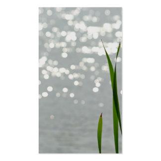 Cattail delante del lago tarjetas de visita
