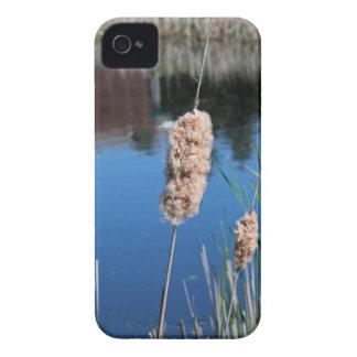 Cattail I iPhone 4 Case-Mate Case