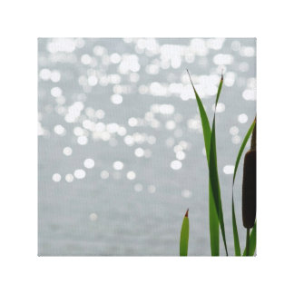 Cattail in Front of Lake Gallery Wrap Canvas