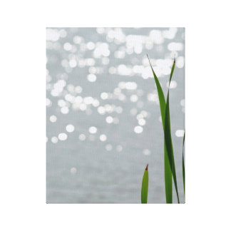 Cattail in Front of Lake Canvas Prints