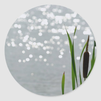 Cattail in Front of Lake Classic Round Sticker