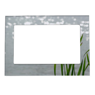 Cattail in Front of Lake Magnetic Frame