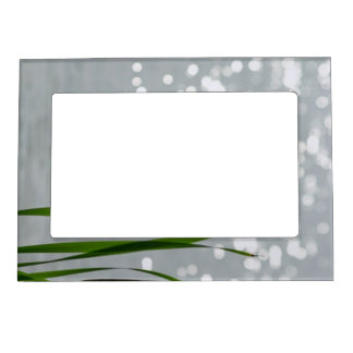 Cattail in Front of Lake Magnetic Photo Frame