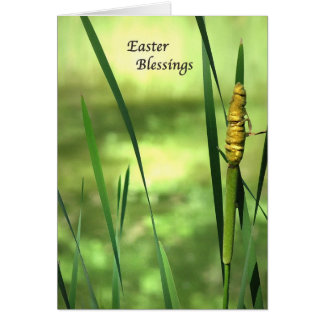 Cattail Pond Easter Card