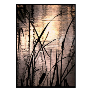 Cattails at Sunset ATC Large Business Cards (Pack Of 100)
