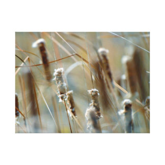 Cattails in the Breeze Canvas Wrap Print Canvas Prints