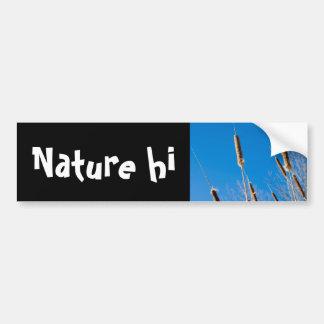 cattails of winter bumper sticker
