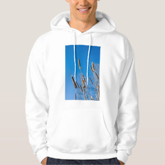 cattails of winter hooded pullover