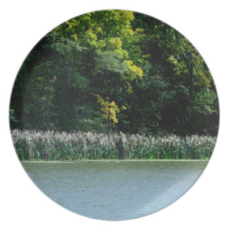 Cattails On The Lakes Edge Party Plate