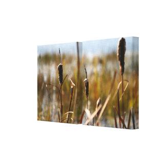 Cattails Split Stretched Canvas Prints