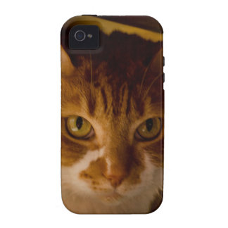 Cattitude Vibe iPhone 4 Covers