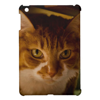 Cattitude iPad Mini Protectores