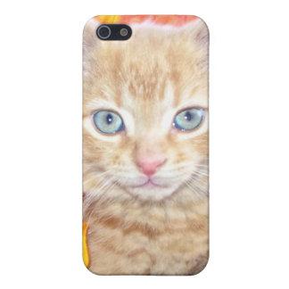 Cattitude, gatito anaranjado del gato del gatito c iPhone 5 carcasas