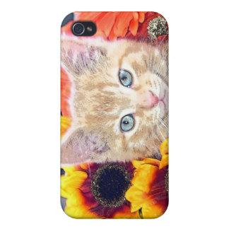 Cattitude, gatito anaranjado del gato del gatito c iPhone 4 cárcasas