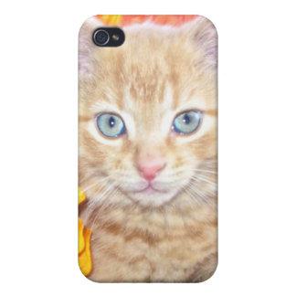 Cattitude, gatito anaranjado del gato del gatito c iPhone 4 cobertura