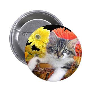 Cattitude, gato del gatito del Coon de Maine, flor Pin Redondo 5 Cm