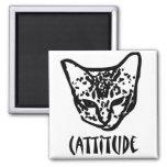 Cattitude Imanes
