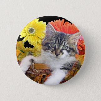 Cattitude, Maine Coon Kitten Cat, Colorful Flowers Pinback Button