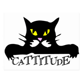 cattitude tarjeta postal