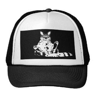 Cattitude un gato con el gorra del camionero de la