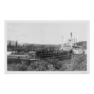 Cattle Barge Yukon River 1914 Poster